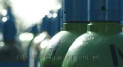 Food gas mixtures