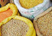 Культуры зерновые купить Одесса