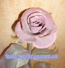 Shod rose Shod roses Kiev Kharkiv Moscow Kovan_ of