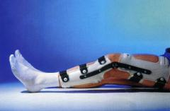 Orthoses on coxofemoral-knee hinge joints