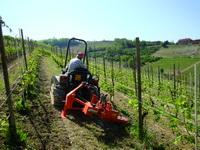 Equipment for care of vineyards