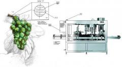 Equipment for winemaking