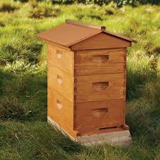 Let's make under the order beehives