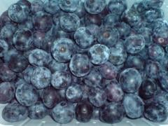 The bilberry frozen 2014 wholesale on 34 UAH.