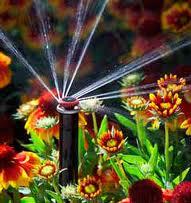 Системы автоматического полива HUNTER в Виннице и