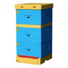 Beehives wooden, polystyrene foam