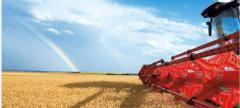 Жатки для уборки кукурузы, запчасти к жаткам, от производителя