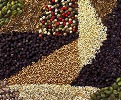 Sesame, caraway seeds, coriander, coconut crumb