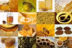 Подмор бджолиний