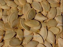 パンプキン種子