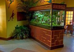 Aquarium in an interior