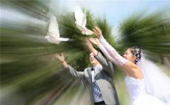 запуск белых голубей