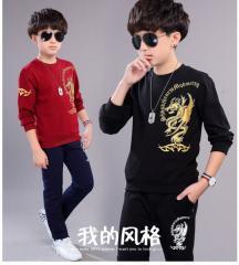 Детская одежда для мальчиков комплект из двух вещей