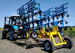 Cultivator of KPN-4,5 of