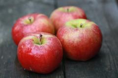 Сорт яблуні Топаз