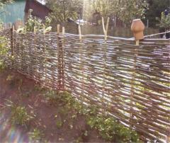 Плетень, Забор из лозы