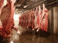 Изделия мясные,мясные изделия и блюда, мясо и мясная продукция,продукты и напитки.