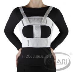 Bandage fixing thoracic (chest)