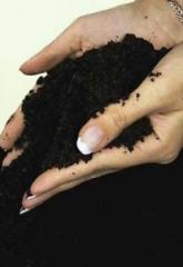 Production of a substratum of TM peat of Biogrunt