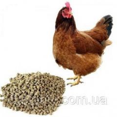 Комбикорм для кур-несушек Наша ферма мешок 20 кг