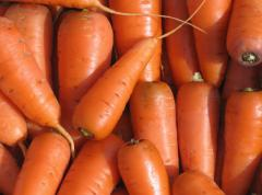 We sell carrots and we buy, the Ivano-Frankivsk