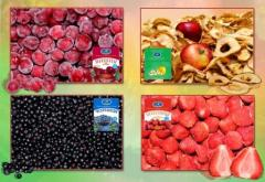 Fruit quick-frozen (Products of a fast freezing,