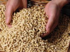 Pellets wheat, expor
