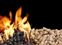 Fuel boiler, for pelletny coppers