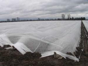 Агроволокно белое 30мк