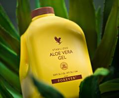 The stabilized Aloe Gel Vera wholesale Kiev the
