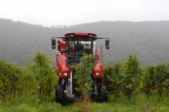 The combine for cleaning of ERO grapes - SF 200