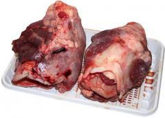Beef kaltyk   LLC Agroproduk