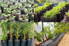 Expendable materials for greenhouses