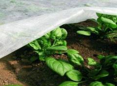 Агроволокно Р-23 г/м2 4, 2/100м Premium-agro...