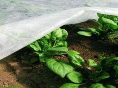 Агроволокно Р-23 г/м2 6, 35/100м Premium-agro