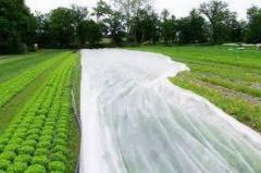 Агроволокно Р-50 г/м2 3.2/100м Premium-agro...