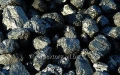 Coal Anthracitic group