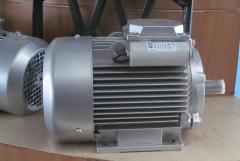 Однофазный асинхронный электродвигатель...