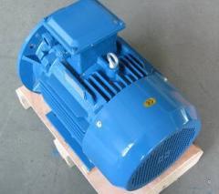 Однофазный асинхронный электродвигатель SY80B2