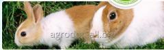 Compound feeds for rabbits and nutrias