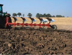 Plows plantage