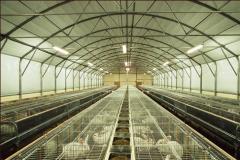 Tavşan çiftlikleri için teçhizatları