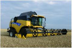 Combines harvest Ukrainian and foreign producers