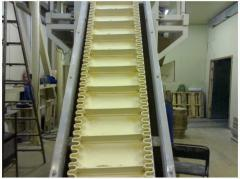 Modular conveyer belts with a lateral protection