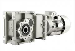 Motor reducers worm and cylindrical