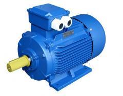 Electric motors are reversive