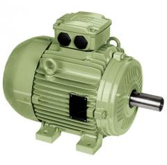 Standard electric motors