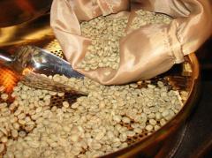 Кофе зеленый (необжаренный) Robusta Vietnam