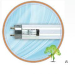 Philips TUV-15W lamp. Specify the price by phone.