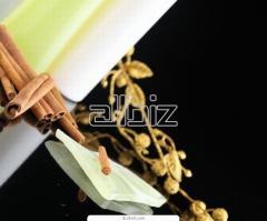 Mezoroller|mezorollera ZGTS with titanic gilded